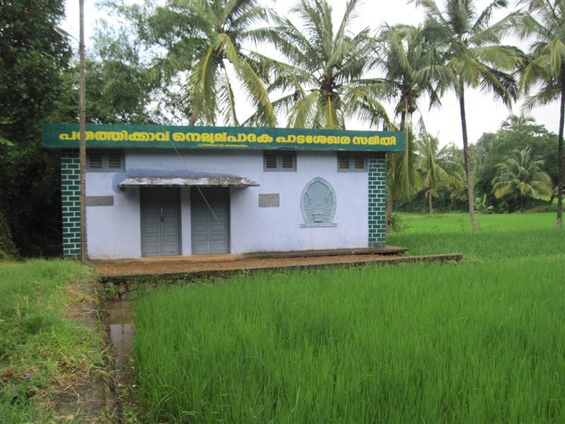 Paruthikkavu Padashekarasamithi