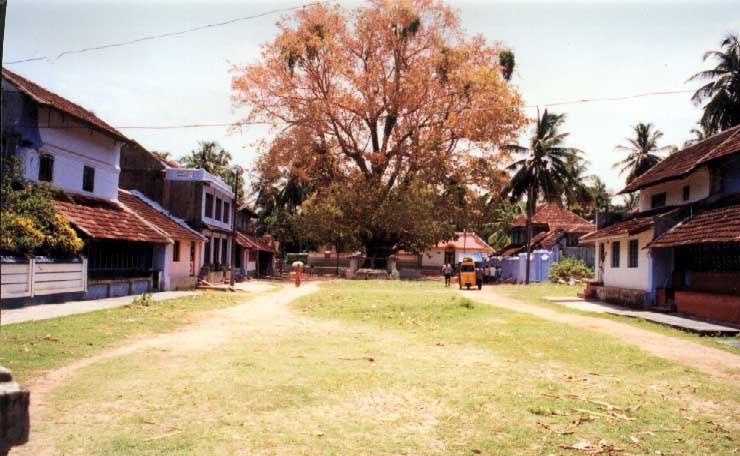 eastern_village2_jpg