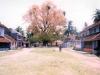eastern_village1_jpg