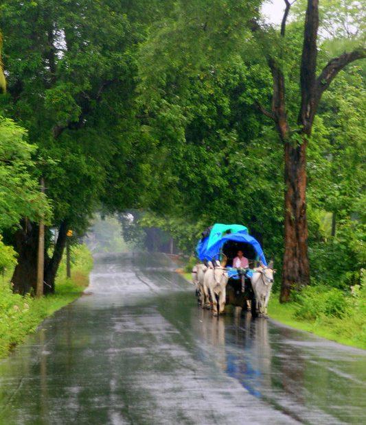 kerala monsoon rains