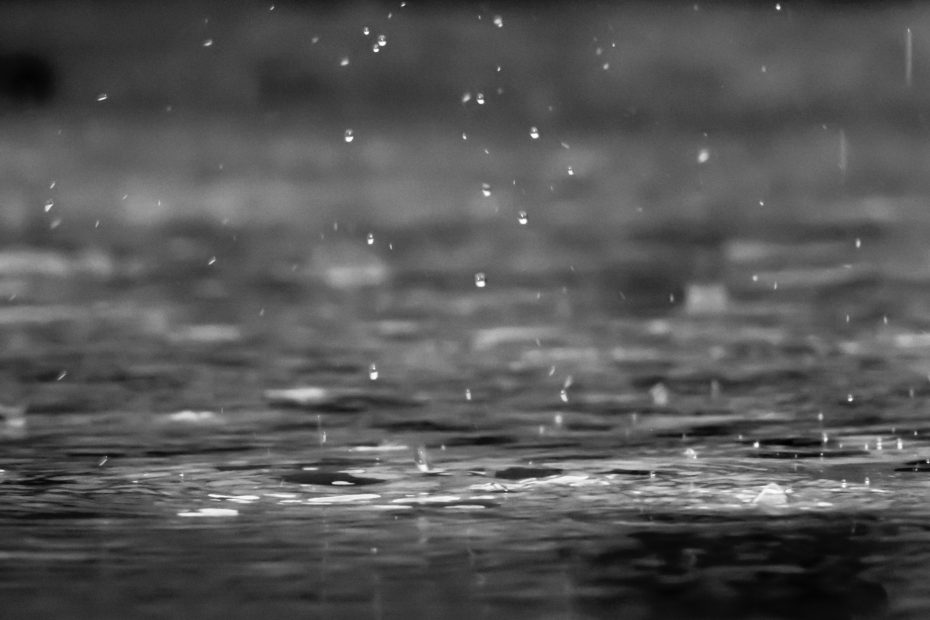 Top 20 days with the highest rainfall. ഏറ്റവും കൂടുതൽ മഴ ലഭിച്ച 20 ദിവസങ്ങൾ